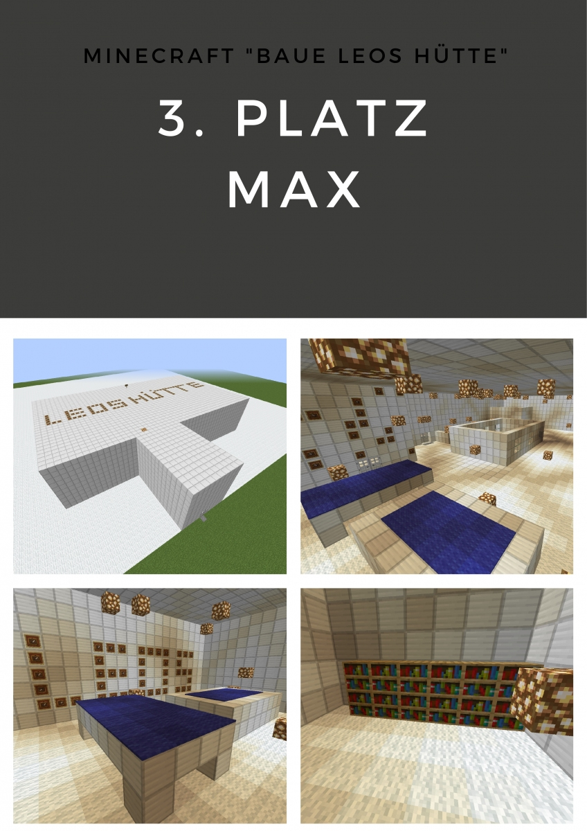 Minecraft3
